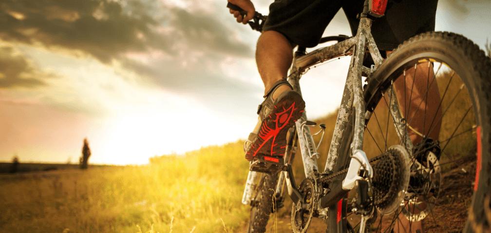 deinBIR Freizeit Fahrrad